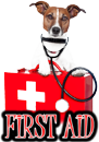 DOG FIRST AID - DOGICA&reg
